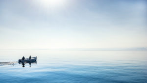 Fishing boat on Lake Garda, province Brescia, Lombardy, Italy, Platanus acerifolia