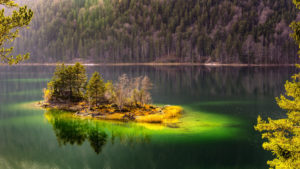 Island in the Eibsee, Grainau, near Garmisch, Werdenfelser Land, Bavaria, Germany