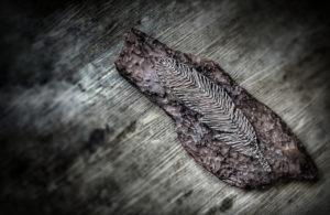 DIY, String Art, Feather, Mystic,