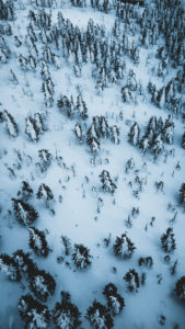 Czech Republic, Ore Mountains, Keilberg, forest, winter landscape from above