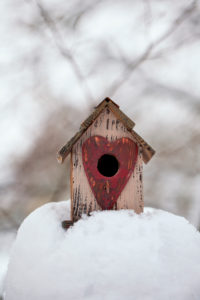 cute little bird ouse with heart shaped entry in the snow on a cold winter day