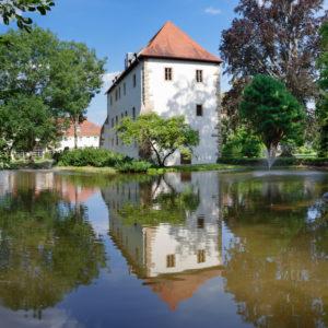 Old castle, Neckar (river)bischofsheim, Rhein-Neckar-Kreis (district), Baden-Wurttemberg, Germany
