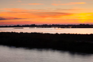 Petit Camargue at sundown, Department Gard, Languedoc-Roussillon, the South of France, France