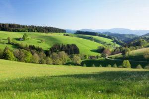 Spring in the Glottertal, Black Forest, Baden-Wurttemberg, Germany