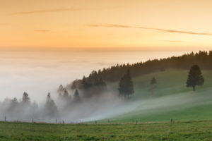 view from the Schauinsland over the Rhine plain at fog, Black Forest, Baden-Wurttemberg, Germany