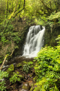 Horseshoe Falls, Matai Stream, Matai Falls Walk, The Catlins, Otago, South Island, New Zealand, Oceania