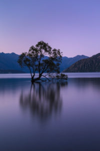 Lake Wanaka at the blue hour, Mount Aspiring National Park, UNESCO World Heritage Site, Otago, South Island, New Zealand, Oceania
