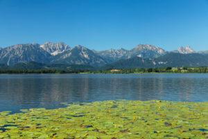 Hopfensee, Hopfen am See, Tannheimer Berge, Ostallgäu, Allgäu, Schwaben, Oberbayern, Deutschland