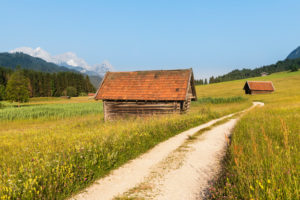 Path through flower meadows at Geroldsee, Upper Bavaria, Bavaria, Germany