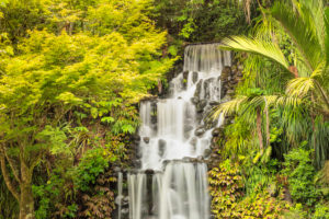 Waterfall in Pukekura Park, New Plymouth, Taranaki, North Island, New Zealand