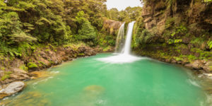 Tawhei Falls waterfall, Gollum, Lord of the Rings filming location, Tongariro National Park, UNESCO World Natural Heritage, North Island, New Zealand,