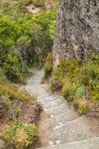 Hiking trail to Taranaki Falls, Tongariro National ParkNorth Island, New Zealand, North Island, Oceania