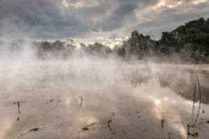 Kuirau Park, Geothermal, Rotorua, Bay of Plenty, North Island, New Zealand