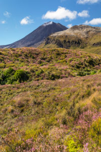Mount Ngauruhoe, Tongariro National Park, UNESCO World Heritage Site; North Island, New Zealand, Oceania