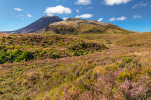 Mount Ngauruhoe, Tongariro-Nationalpark, UNESCO Weltnaturerbe; Nordinsel, Neuseeland, Ozeanien