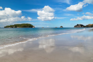 Hahei Beach, Coromandel Peninsula, Waikatu, North Island, New Zealand,