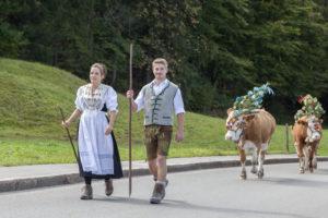 Almabtrieb from the Königsbachalm to Schönau am Königssee, the Springl family from the Aschbachhof, Berchtesgadener Land, Upper Bavaria, Bavaria, southern Germany, Germany, Europe