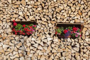 Geraniums in a pile of wood, renewable energies