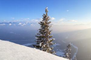 Blick vom Herzogstand über den Walchensee zum Karwendel, Bayerische Voralpen,  Oberbayern, Bayern, Süddeutschland, Deutschland, Europa