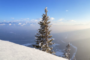 View from the Herzogstand to the lake Walchensee and Karwendel, Bavarian Prealps, Upper Bavaria, Bavaria, Southern Germany, Germany, Europe