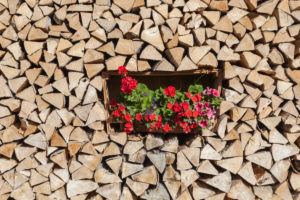 Woodpile with geraniums, Garmisch, Garmisch-Partenkirchen, Upper Bavaria, Bavaria, southern Germany, Germany, Europe