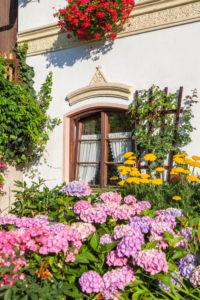 Bauerngarten vor Bauernhaus in Törwang, Gemeinde Samerberg, Chiemgau, Oberbayern, Bayern, Süddeutschland, Deutschland, Europa