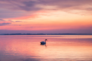 Sunset on Lake Chiemsee at Übersee, Chiemgau, Upper Bavaria, Bavaria, Southern Germany, Germany, Europe