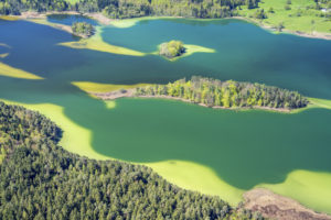 Aerial view of the Osterseen, Iffeldorf, Upper Bavaria, Bavaria, southern Germany, Germany, Europe