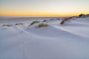 Dünen am Strand auf der Insel Amrum, Nebel, Nordfriesische Inseln, Schleswig-Holstein, Norddeutschland, Deutschland, Europa