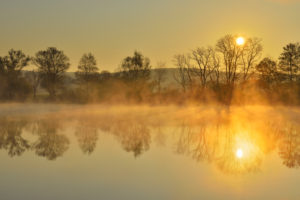 River Main at sunrise with morning mist, Himmelstadt, Franconia, Bavaria, Germany