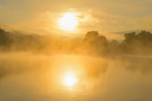 River Main with fog at sunrise, Miltenberg, Spessart, Franconia, Bavaria, Germany