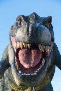 Saurian, dinosaur, tyrannosaurus rex, styrofoam, figure