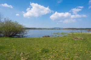Lake, spring, Ober-Mooser See, Freiensteinau, Vogelsberg, Hesse, Germany