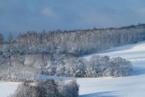 Landscape, forest, winter, Gottersdorf, Odenwald, Baden-Württemberg, Germany