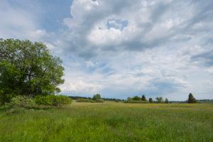 Landscape, meadow, spring, Lange Rhön, Rhön, Bavaria, Germany