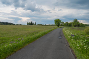 Road, meadow, spring, Lange Rhön, Rhön, Bavaria, Germany