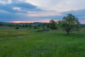 Landschaft, Wiese, Sonnenaufgang, Frühling, Oberelsbach, Lange Rhön, Rhön, Bayern, Deutschland