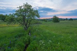Landscape, meadow, sunrise, spring, Oberelsbach, Lange Rhön, Rhön, Bavaria, Germany