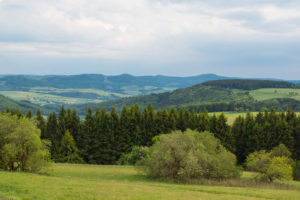 Landscape, forest, meadow, evening, spring, Wasserkuppe, Gersfeld, Rhön, Hesse, Germany