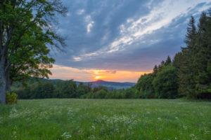 Wald, Wiese, Sonneuntergang, Frühling, Reulbach, Ehrenberg, Rhön, Hessen, Deutschland