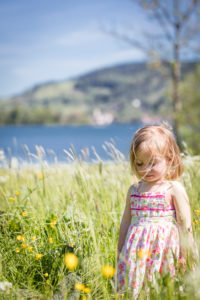 Little girl picks flowers on a meadow on the Schliersee in spring