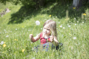 Child in grass with blowball