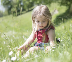 Child in grass picking flowers