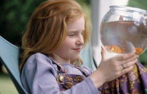 Mädchen, Goldfischglas, Fische,  betrachten,
