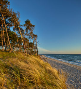 Germany, Mecklenburg Western Pomerania, Darß, western beach of Darß, evening mood