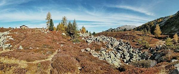 Unterwegs auf dem Tiroler Zirbenweg, Panoramaaufnahme mit herbstlich gefärbtem Heideböden und Geröllfeld