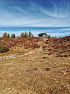 Unterwegs auf dem Tiroler Zirbenweg, Hütte, herbstlich gefärbte Heideböden