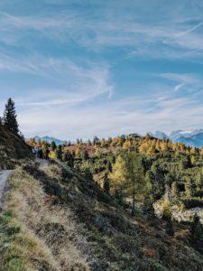 Unterwegs auf dem Tiroler Zirbenweg