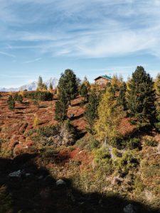 Unterwegs auf dem Tiroler Zirbenweg: Hütte steht inmitten der herbstlich gefärbten Heideböden