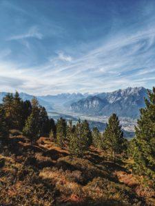 Unterwegs auf dem Tiroler Zirbenweg, Blick auf das Karwendelmassiv mit Zirben im Vordergrund